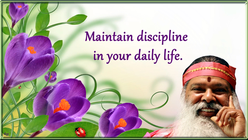 Maintain discipline in your daily life (English) ~ June 21, 2013