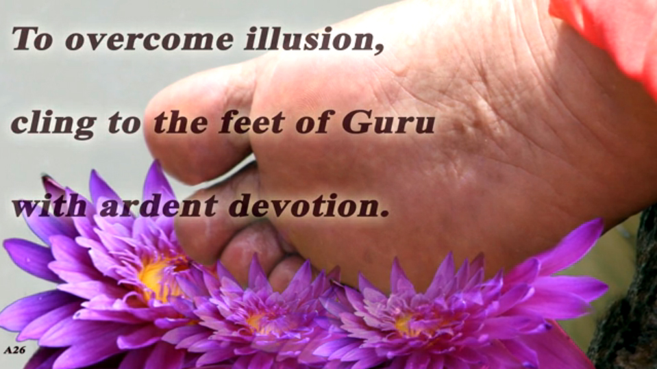 Cling to Gurus Feet