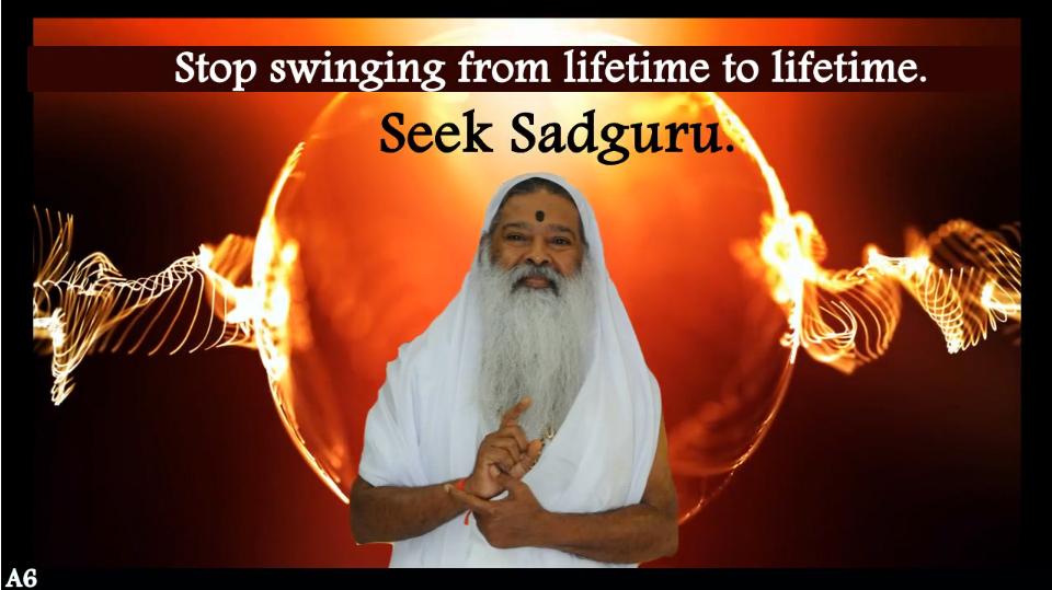 Seek Sadguru