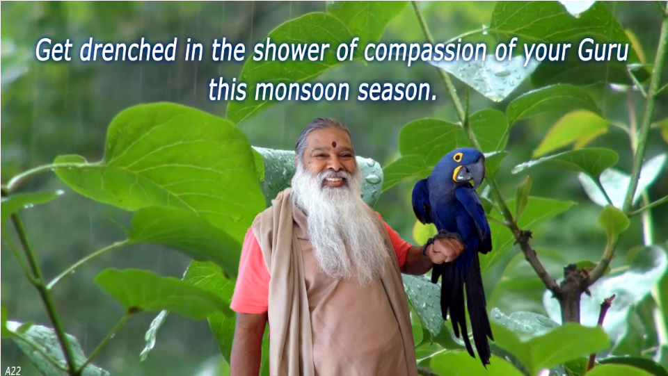 Compassion of Guru