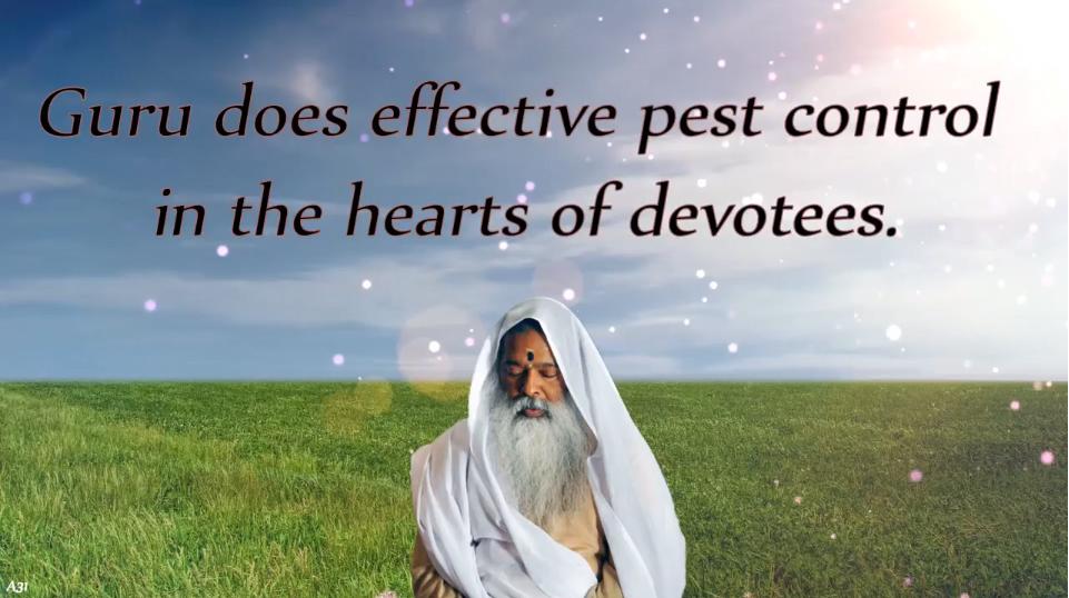 Guru does