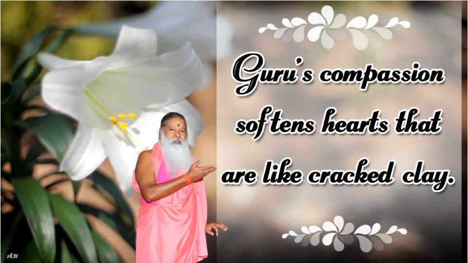 Gurus Compassion