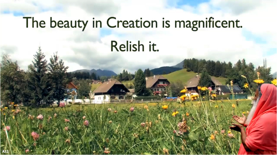 beauty in creation