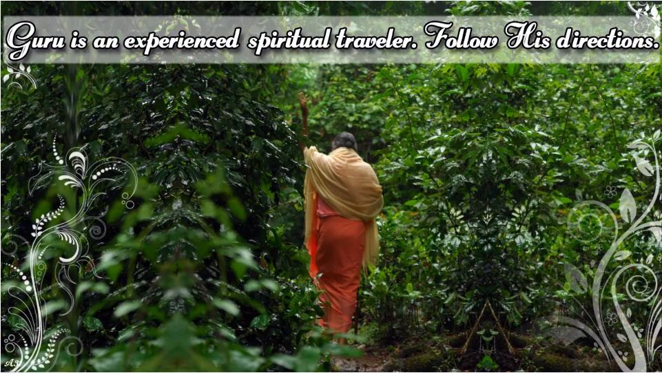 Guru is experienced