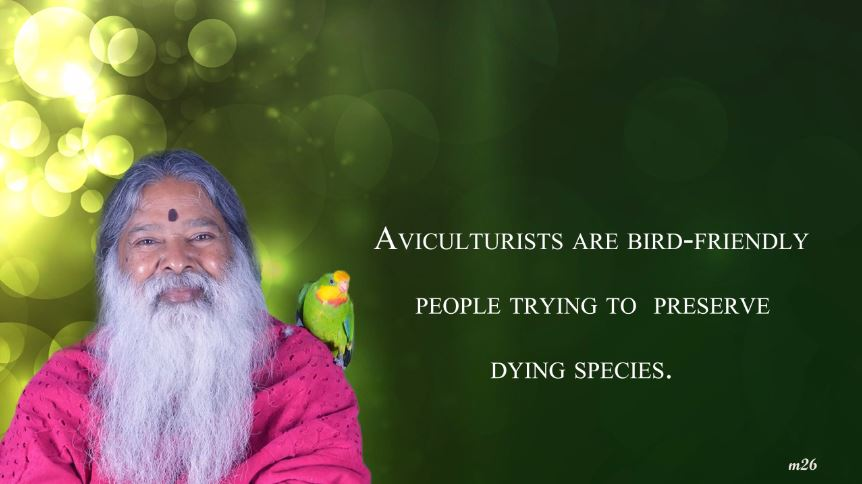 Aviculturists