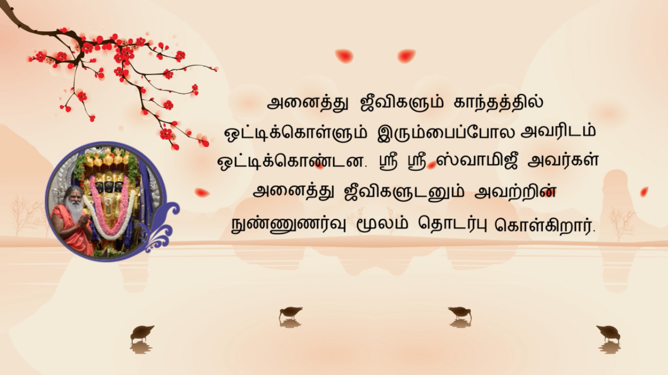 SgsMMS_Tamil_27_Mar